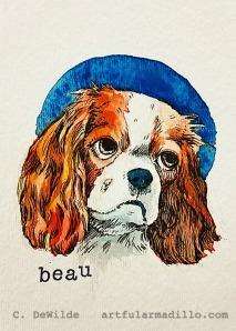 Beau_DV_wtmr